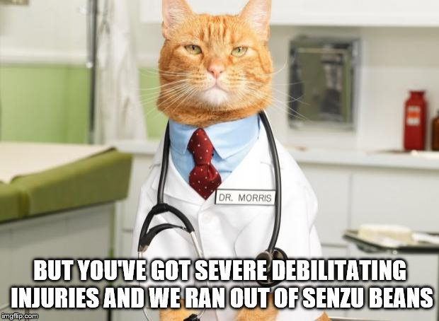Cat Doctor | BUT YOU'VE GOT SEVERE DEBILITATING INJURIES AND WE RAN OUT OF SENZU BEANS | image tagged in cat doctor | made w/ Imgflip meme maker