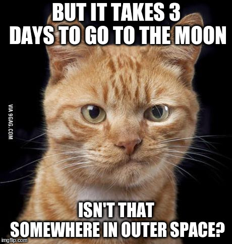 Doubting Cat | BUT IT TAKES 3 DAYS TO GO TO THE MOON ISN'T THAT SOMEWHERE IN OUTER SPACE? | image tagged in doubting cat | made w/ Imgflip meme maker
