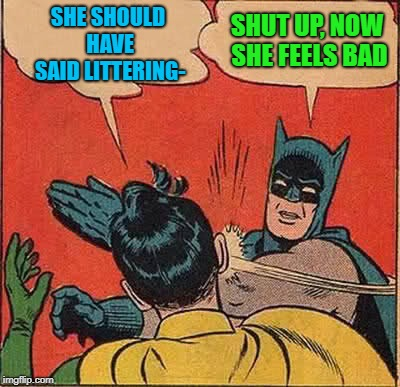 Batman Slapping Robin Meme | SHE SHOULD HAVE SAID LITTERING- SHUT UP, NOW SHE FEELS BAD | image tagged in memes,batman slapping robin | made w/ Imgflip meme maker