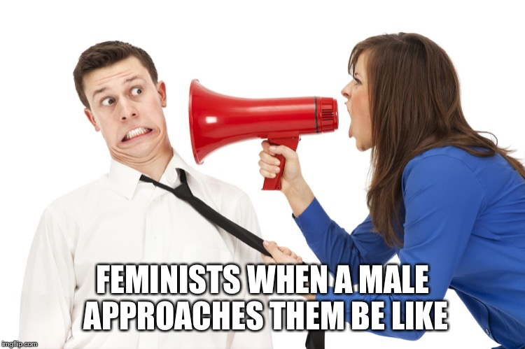 Through my knowledge this is true | FEMINISTS WHEN A MALE APPROACHES THEM BE LIKE | image tagged in yelling shouting,memes,feminist,kiss my ass | made w/ Imgflip meme maker