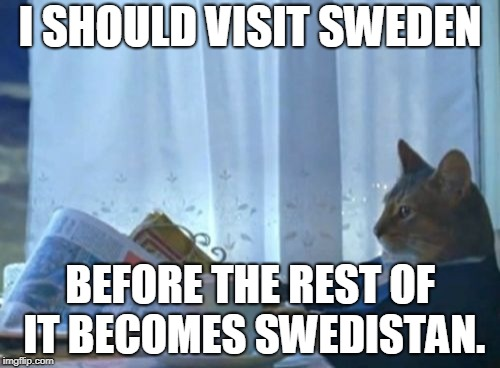 Last Dance in Sweden | I SHOULD VISIT SWEDEN BEFORE THE REST OF IT BECOMES SWEDISTAN. | image tagged in memes,i should buy a boat cat,religion of peace,sweden | made w/ Imgflip meme maker