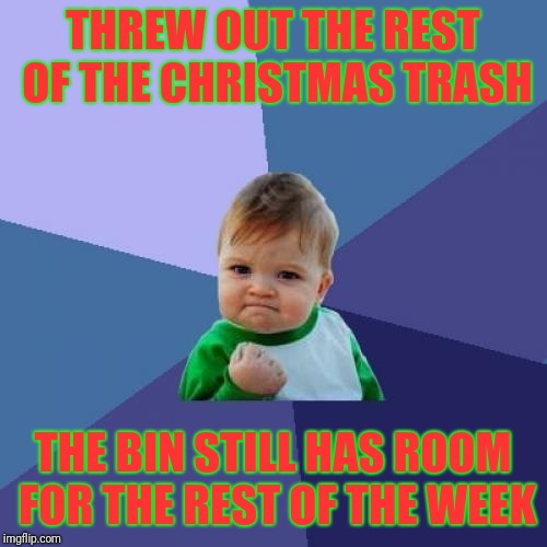 Not to brag about my box cutting skills, but... | THREW OUT THE REST OF THE CHRISTMAS TRASH THE BIN STILL HAS ROOM FOR THE REST OF THE WEEK | image tagged in memes,success kid,christmas trash,after christmas,christmas,trash | made w/ Imgflip meme maker