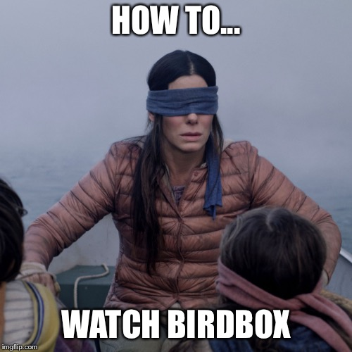 Bird Box | HOW TO... WATCH BIRDBOX | image tagged in bird box | made w/ Imgflip meme maker