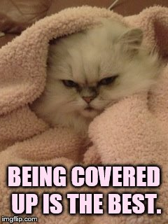 BEING COVERED UP IS THE BEST. | made w/ Imgflip meme maker