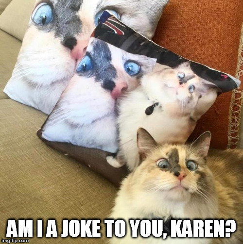 Jeeez Karen | AM I A JOKE TO YOU, KAREN? | image tagged in am i a joke to you,serious cat,crosseyed | made w/ Imgflip meme maker
