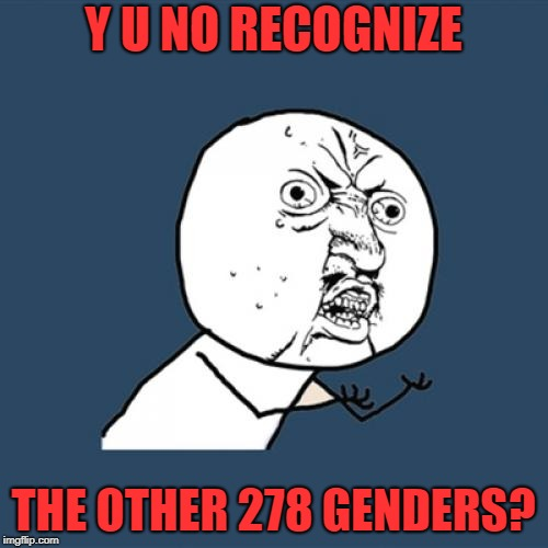 Y U No Meme | Y U NO RECOGNIZE THE OTHER 278 GENDERS? | image tagged in memes,y u no | made w/ Imgflip meme maker