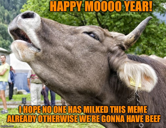 Don't Have A Cow |  HAPPY MOOOO YEAR! I HOPE NO ONE HAS MILKED THIS MEME ALREADY OTHERWISE WE'RE GONNA HAVE BEEF | image tagged in happy new year,new year,memes,2019,cow | made w/ Imgflip meme maker