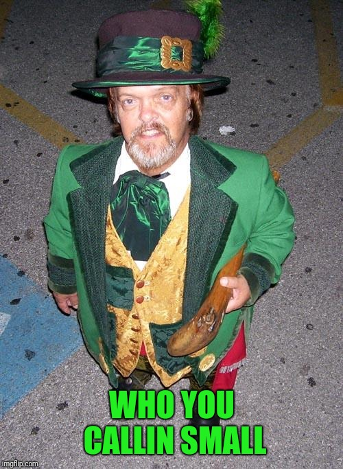 Irish Midget | WHO YOU CALLIN SMALL | image tagged in irish midget | made w/ Imgflip meme maker
