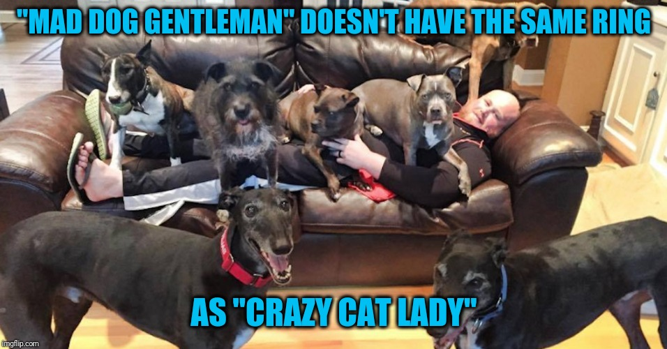 "Lucky me | ""MAD DOG GENTLEMAN"" DOESN'T HAVE THE SAME RING AS ""CRAZY CAT LADY"" 