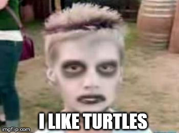 I like turtles | I LIKE TURTLES | image tagged in i like turtles | made w/ Imgflip meme maker