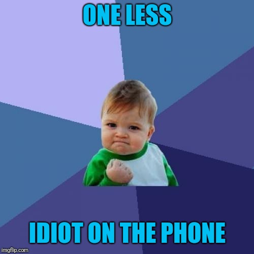Success Kid Meme | ONE LESS IDIOT ON THE PHONE | image tagged in memes,success kid | made w/ Imgflip meme maker