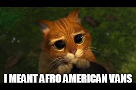 Apology Cat | I MEANT AFRO AMERICAN VANS | image tagged in apology cat | made w/ Imgflip meme maker