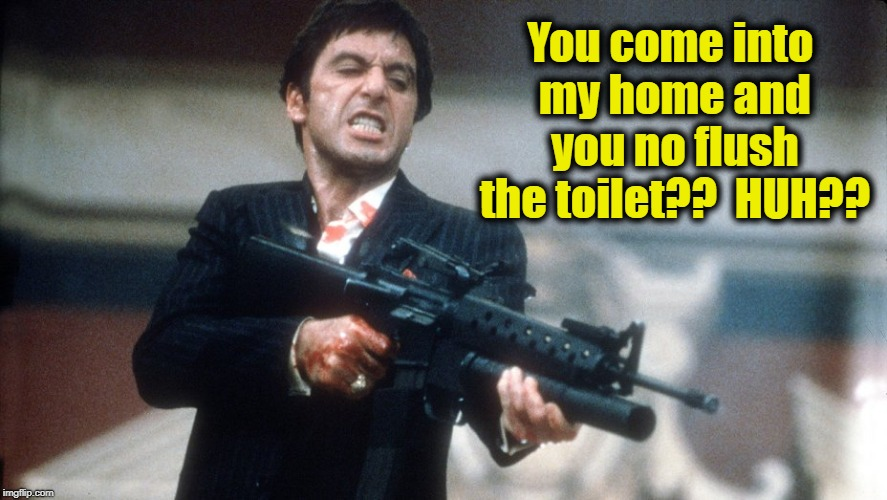 al pacino scareface | You come into my home and you no flush the toilet??  HUH?? | image tagged in al pacino scareface | made w/ Imgflip meme maker