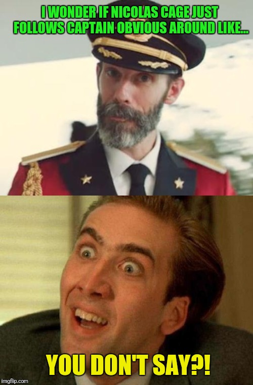 That would be ironic! | I WONDER IF NICOLAS CAGE JUST FOLLOWS CAPTAIN OBVIOUS AROUND LIKE... YOU DON'T SAY?! | image tagged in captain obvious,nicolas cage,irony | made w/ Imgflip meme maker