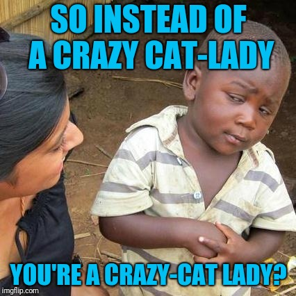 Third World Skeptical Kid Meme | SO INSTEAD OF A CRAZY CAT-LADY YOU'RE A CRAZY-CAT LADY? | image tagged in memes,third world skeptical kid | made w/ Imgflip meme maker