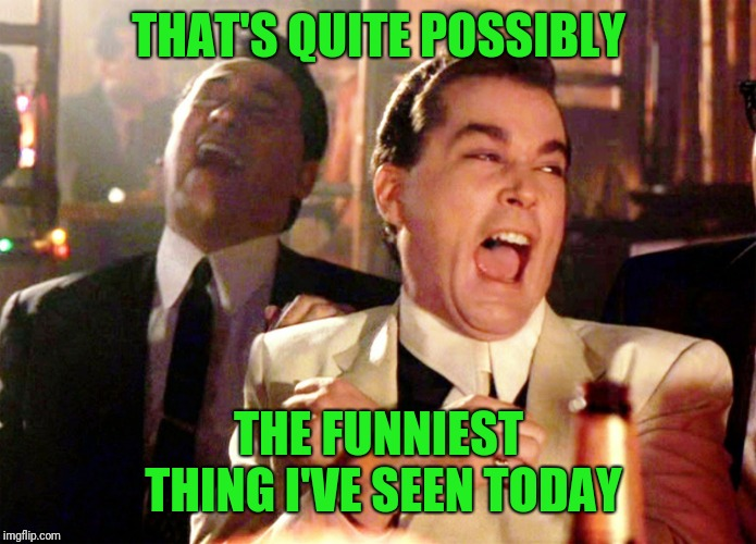 Good Fellas Hilarious Meme | THAT'S QUITE POSSIBLY THE FUNNIEST THING I'VE SEEN TODAY | image tagged in memes,good fellas hilarious | made w/ Imgflip meme maker