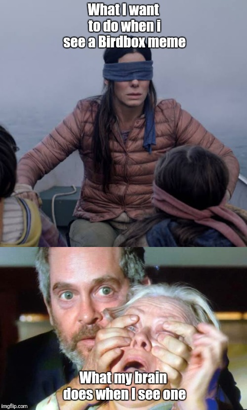 What I want to do when i see a Birdbox meme What my brain does when I see one | image tagged in birdbox,open your eyes | made w/ Imgflip meme maker
