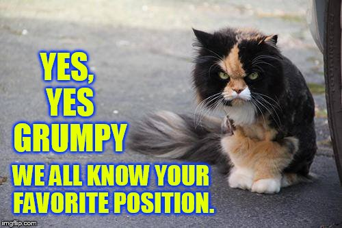 YES, YES GRUMPY WE ALL KNOW YOUR FAVORITE POSITION. | made w/ Imgflip meme maker