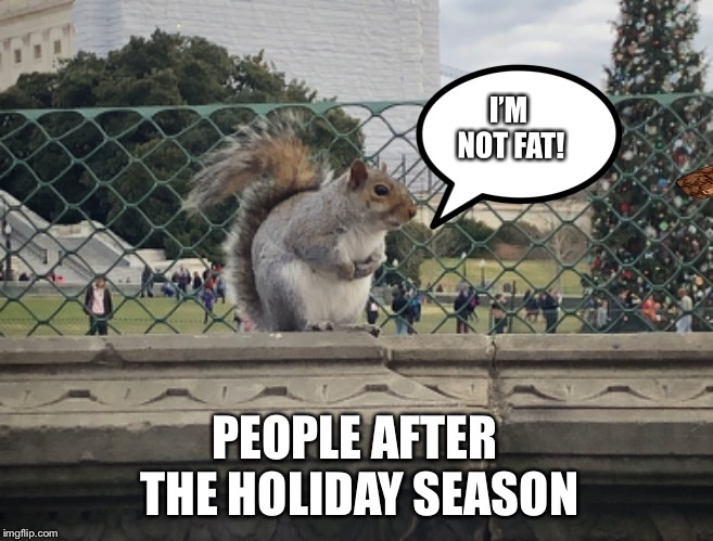 People after holiday season | I'M NOT FAT! PEOPLE AFTER THE HOLIDAY SEASON | image tagged in holidays,fat,memes | made w/ Imgflip meme maker