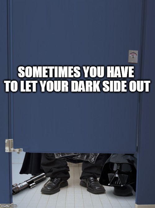 taking a sith | SOMETIMES YOU HAVE TO LET YOUR DARK SIDE OUT | image tagged in taking a sith,darth vader,the dark side,shit,dump | made w/ Imgflip meme maker