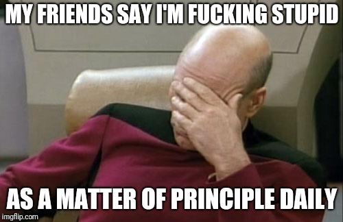 Captain Picard Facepalm Meme | MY FRIENDS SAY I'M F**KING STUPID AS A MATTER OF PRINCIPLE DAILY | image tagged in memes,captain picard facepalm | made w/ Imgflip meme maker