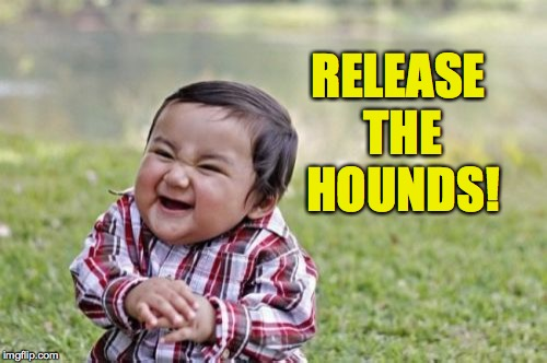 Evil Toddler Meme | RELEASE THE HOUNDS! | image tagged in memes,evil toddler | made w/ Imgflip meme maker