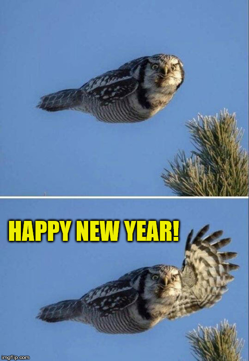 Oh, by the way... | HAPPY NEW YEAR! | image tagged in happy new year,maga | made w/ Imgflip meme maker