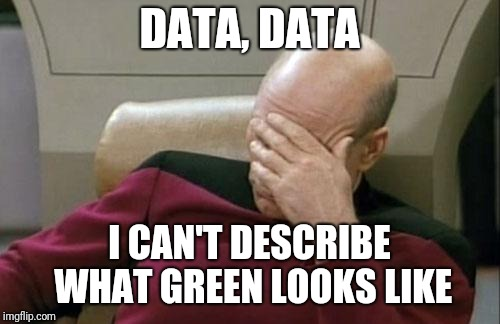 Captain Picard Facepalm Meme | DATA, DATA I CAN'T DESCRIBE WHAT GREEN LOOKS LIKE | image tagged in memes,captain picard facepalm | made w/ Imgflip meme maker
