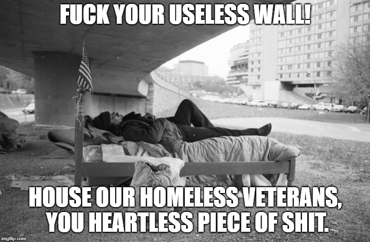 F**K YOUR USELESS WALL! HOUSE OUR HOMELESS VETERANS, YOU HEARTLESS PIECE OF SHIT. | image tagged in fxxkyourwall | made w/ Imgflip meme maker