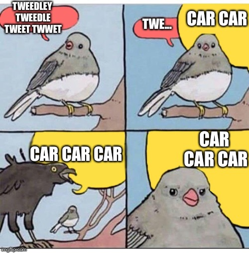 Why don't crows get road killed? The lookout yells car car car |  CAR CAR; TWEEDLEY TWEEDLE TWEET TWWET; TWE... CAR CAR CAR; CAR CAR CAR | image tagged in annoyed bird,car,crow,rude,loud | made w/ Imgflip meme maker