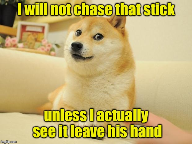 Doge's New Years Resolution | I will not chase that stick unless I actually see it leave his hand | image tagged in memes,doge 2,new year resolutions,happy new year | made w/ Imgflip meme maker
