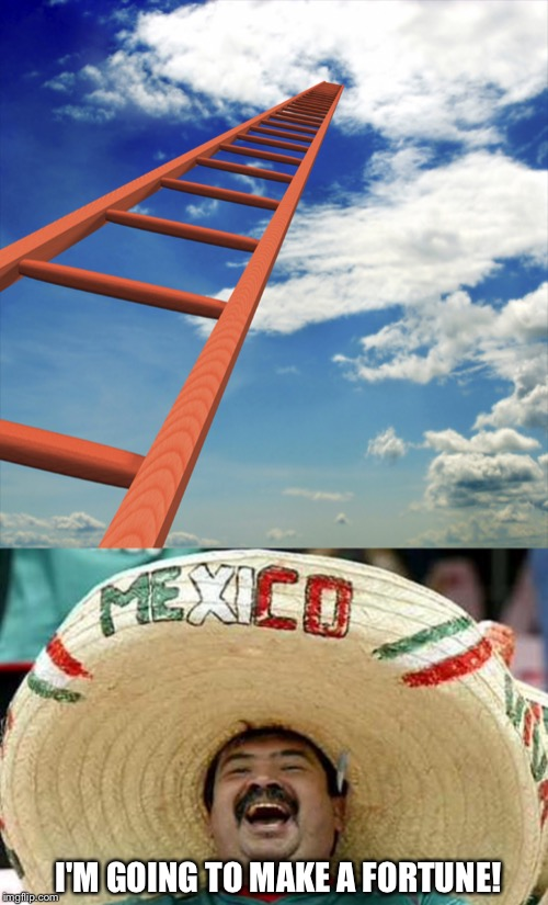 Border Crossing | I'M GOING TO MAKE A FORTUNE! | image tagged in ladder to the sky,trump,wall,border | made w/ Imgflip meme maker