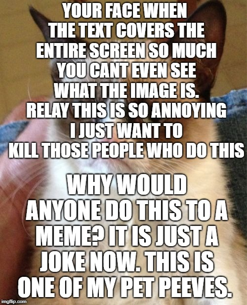 Grumpy Cat Meme | YOUR FACE WHEN THE TEXT COVERS THE ENTIRE SCREEN SO MUCH YOU CANT EVEN SEE WHAT THE IMAGE IS. RELAY THIS IS SO ANNOYING I JUST WANT TO KILL  | image tagged in memes,grumpy cat | made w/ Imgflip meme maker