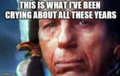 THIS IS WHAT I'VE BEEN CRYING ABOUT ALL THESE YEARS | image tagged in cherokee chief | made w/ Imgflip meme maker