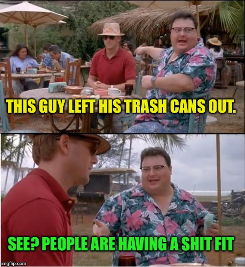 See Nobody Cares Meme | THIS GUY LEFT HIS TRASH CANS OUT. SEE? PEOPLE ARE HAVING A SHIT FIT | image tagged in memes,see nobody cares | made w/ Imgflip meme maker
