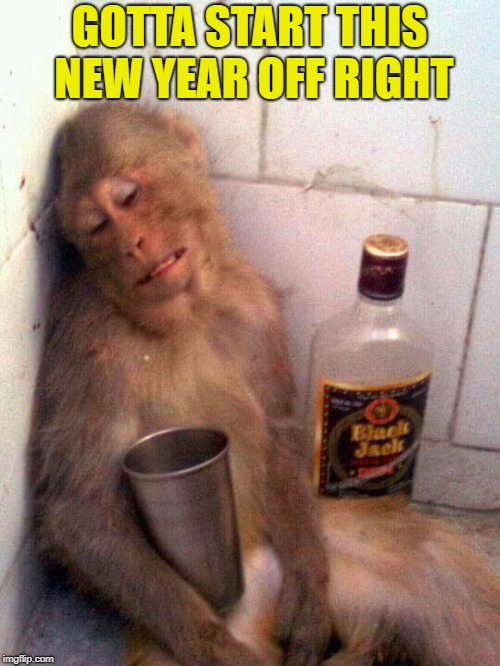 drunk monkey | GOTTA START THIS NEW YEAR OFF RIGHT | image tagged in drunk monkey | made w/ Imgflip meme maker