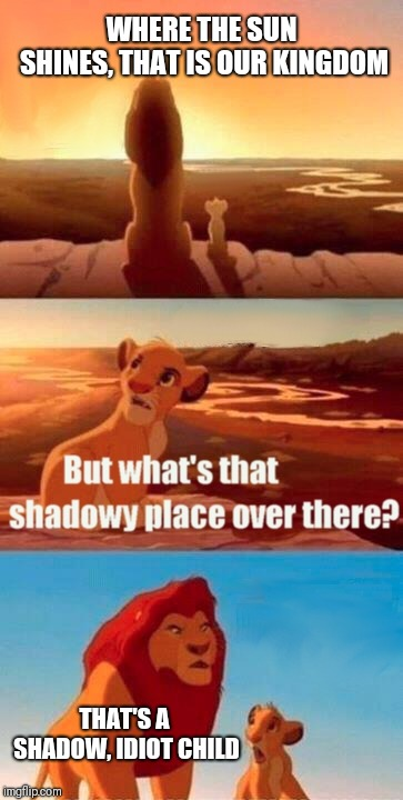 Simba Shadowy Place Meme | WHERE THE SUN SHINES, THAT IS OUR KINGDOM THAT'S A SHADOW, IDIOT CHILD | image tagged in memes,simba shadowy place | made w/ Imgflip meme maker