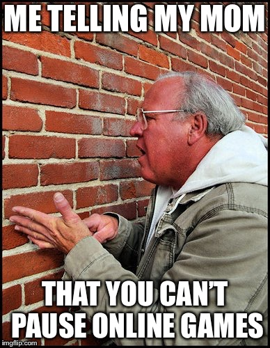 like talking to a brick wall 2 | ME TELLING MY MOM THAT YOU CAN'T PAUSE ONLINE GAMES | image tagged in like talking to a brick wall 2 | made w/ Imgflip meme maker
