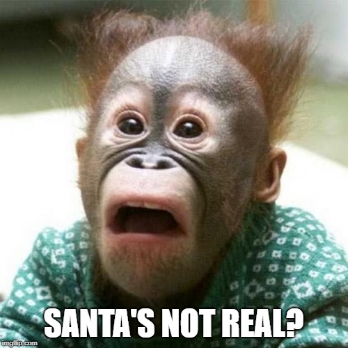 Shocked Monkey | SANTA'S NOT REAL? | image tagged in shocked monkey | made w/ Imgflip meme maker