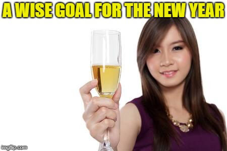 A WISE GOAL FOR THE NEW YEAR | made w/ Imgflip meme maker