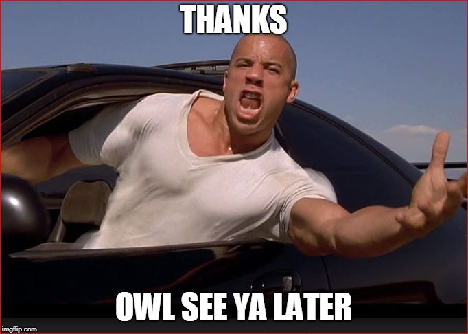 Vin | THANKS OWL SEE YA LATER | image tagged in vin | made w/ Imgflip meme maker