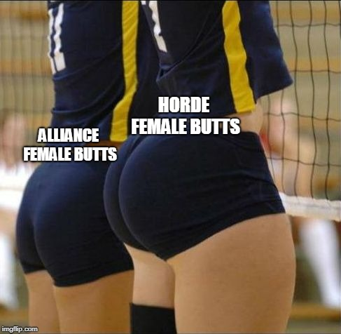 Vollyball meme | ALLIANCE FEMALE BUTTS HORDE FEMALE BUTTS | image tagged in vollyball meme | made w/ Imgflip meme maker