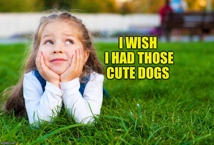 I WISH I HAD THOSE CUTE DOGS | made w/ Imgflip meme maker