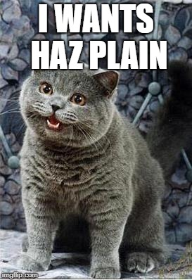 I can haz cheezburger plain | I WANTS HAZ PLAIN | image tagged in i can haz cheezburger plain | made w/ Imgflip meme maker