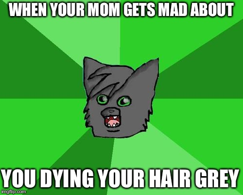 Warrior cats meme | WHEN YOUR MOM GETS MAD ABOUT YOU DYING YOUR HAIR GREY | image tagged in warrior cats meme | made w/ Imgflip meme maker