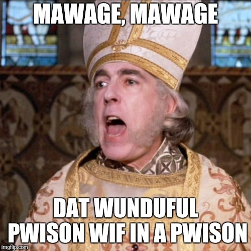 princess bride priest | MAWAGE, MAWAGE DAT WUNDUFUL PWISON WIF IN A PWISON | image tagged in princess bride priest | made w/ Imgflip meme maker