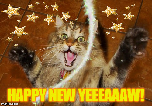 HAPPY NEW YEEEAAAW! | made w/ Imgflip meme maker