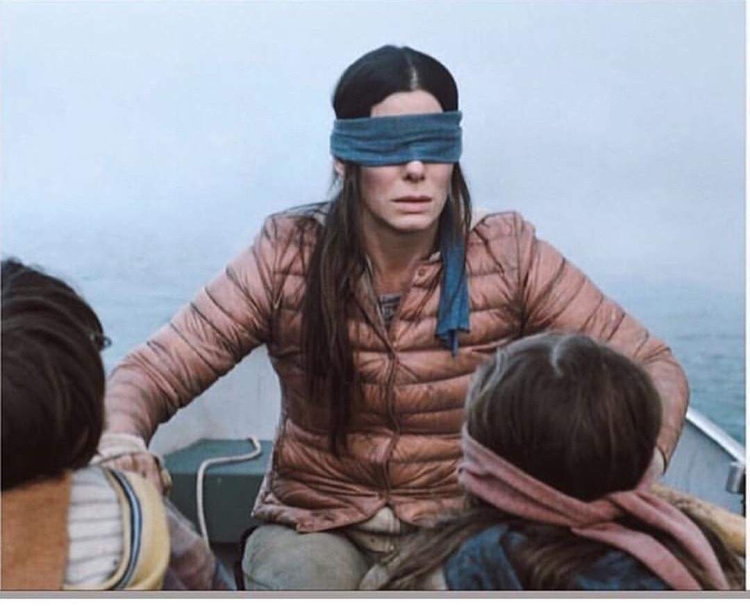 High Quality Birdbox Blank Meme Template