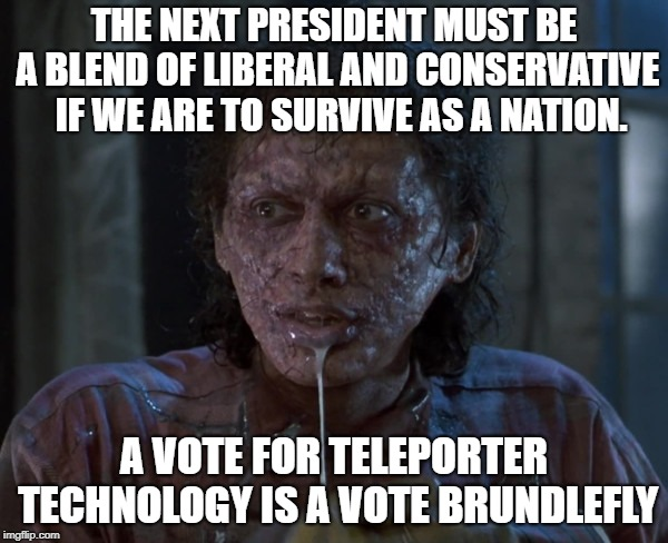 Vote Brundlefly | THE NEXT PRESIDENT MUST BE A BLEND OF LIBERAL AND CONSERVATIVE  IF WE ARE TO SURVIVE AS A NATION. A VOTE FOR TELEPORTER TECHNOLOGY IS A VOTE | image tagged in vote | made w/ Imgflip meme maker