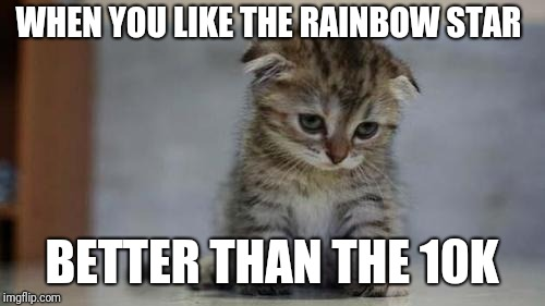 Sad kitten | WHEN YOU LIKE THE RAINBOW STAR BETTER THAN THE 10K | image tagged in sad kitten | made w/ Imgflip meme maker
